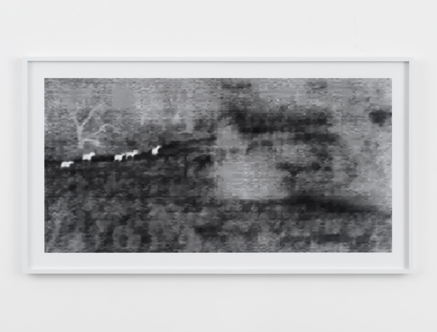 Barbara Ess, Wild Horses [Surveillance Series], 2010, archival pigment print, 24h x 44w in.