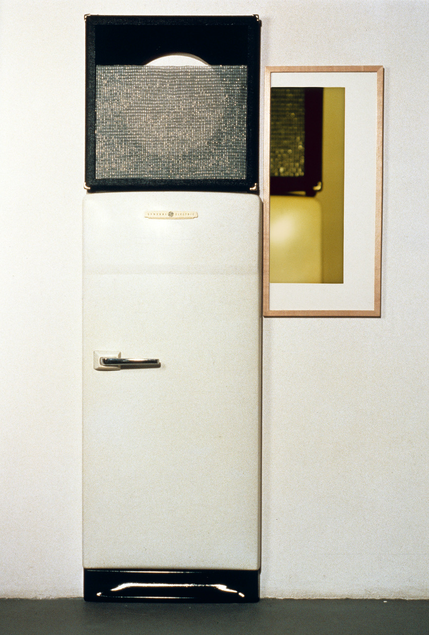Jennifer Bolande, Conjunction Assemblage, 1988, refrigerator door, speaker facing, speaker cloth, framed color photograph, 75.5h x 30w x 5.5d in.