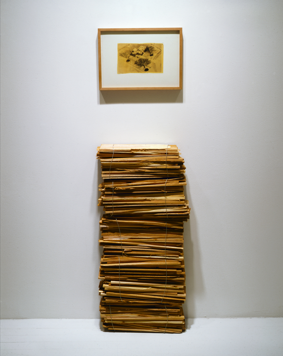 Jennifer Bolande, Stack of Shims (with wire photo),  1987, cedar shims, wire, steel, framed type C print of news clipping, 65h x 18w x 7d in.